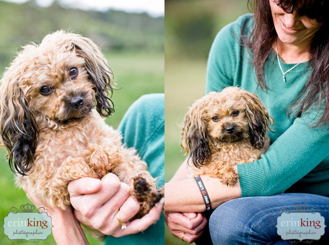 Oscar & Debra Melbourne Pet Photography session