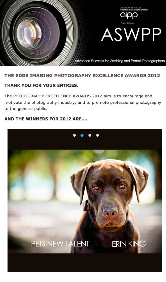 aswpp_PetsNewTalent photography competition winner