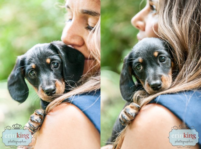 Dachshund puppy with owner