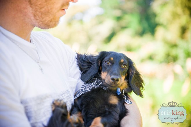 Dachshund & Owner Pet Photography