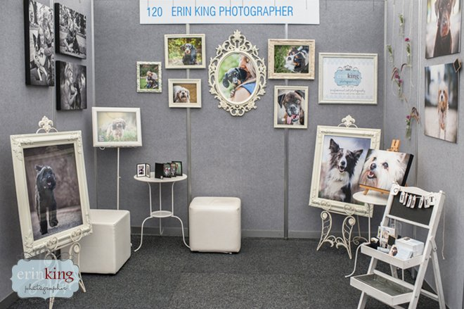 Pet Photography stall display