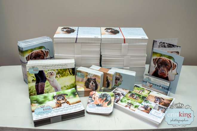 pet photography marketing materials