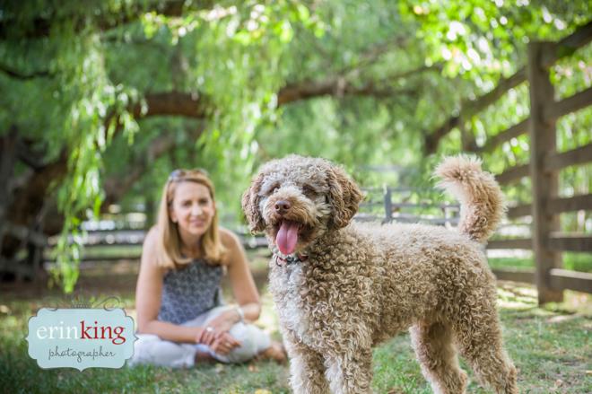 Mocha Melbourne Pet Photography