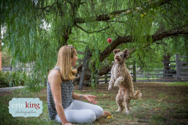 Mocha Melbourne Pet Photography 2