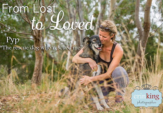 Rescue Dog From Lost to Loved