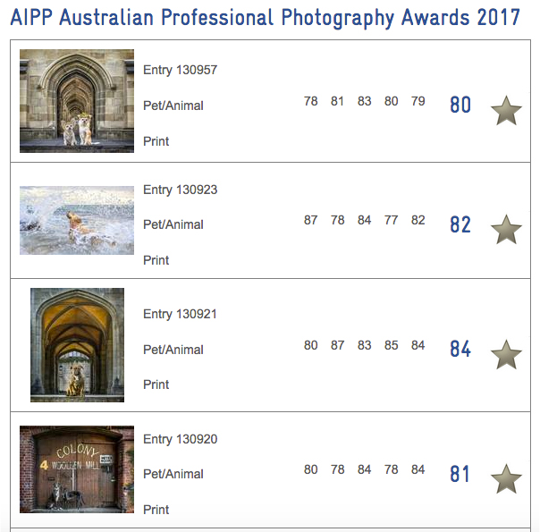 Australian Professional Photography Awards scores