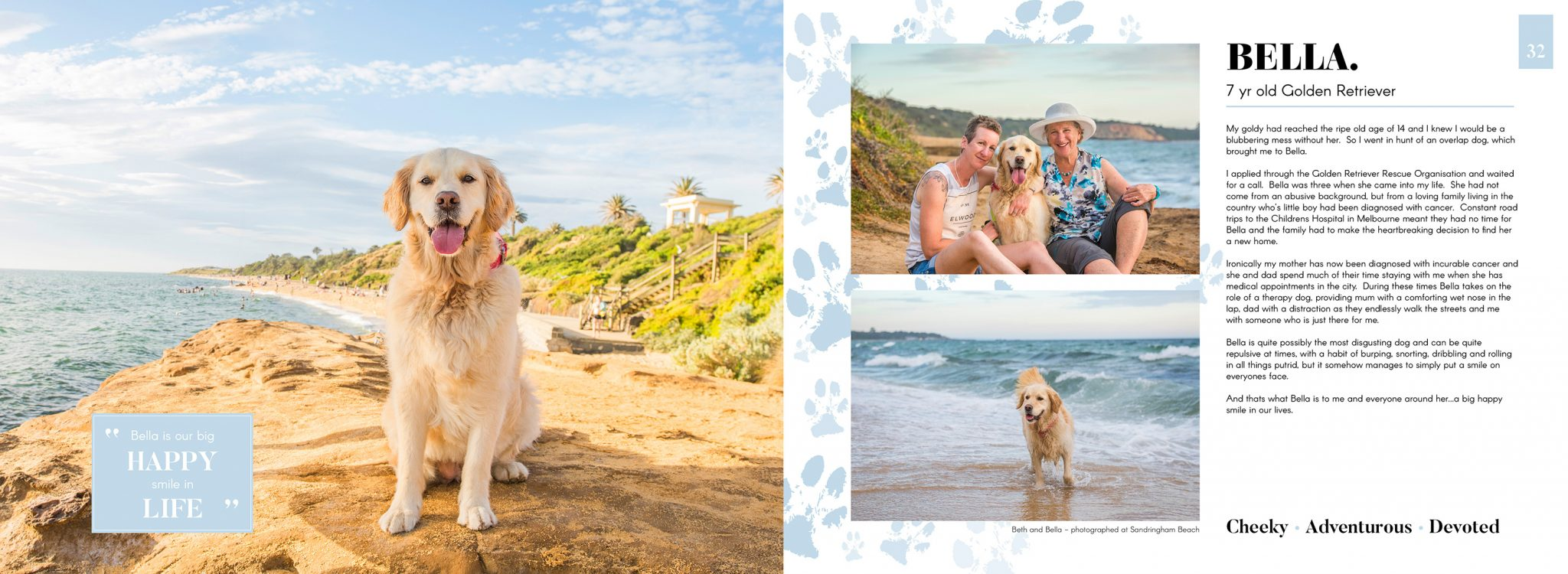 Pet photography stylized sessions