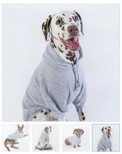 deakin university pet apparel